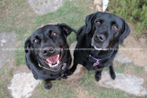 Violet and Olive