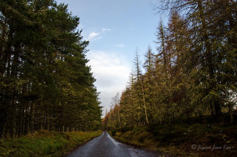 Scotland-Loch-Ness-8605.jpg