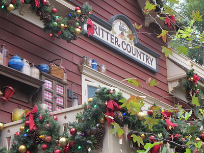 11-18 Disneyland-California Adventure