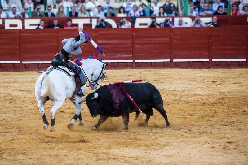 Bullfighting H41.jpg