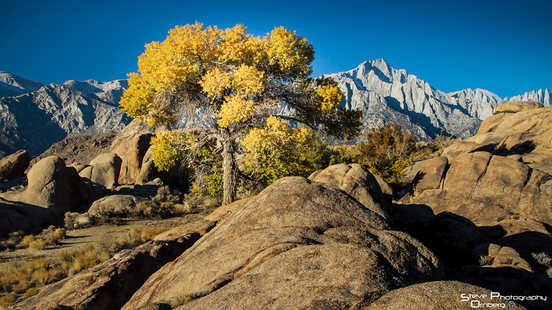 Mt Whitney in distance, Alabama Hills, outside Lone Pine, CA