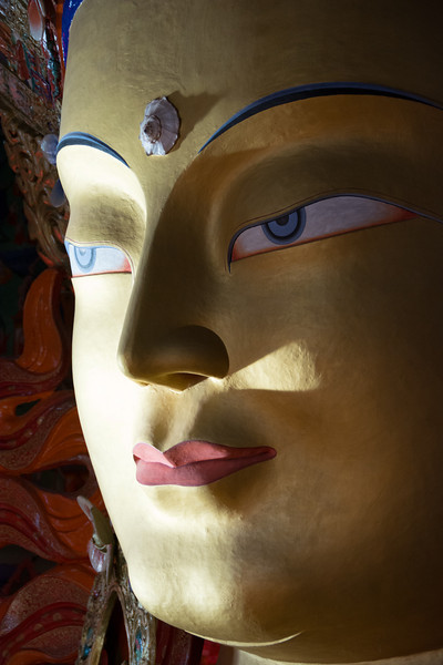 Ladakh Thiksey Gustor 2013-2733.jpg