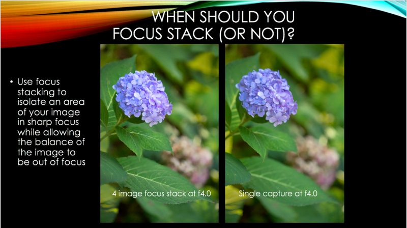 11 focus stack.png