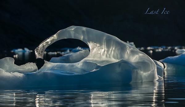 Last Ice Title Image