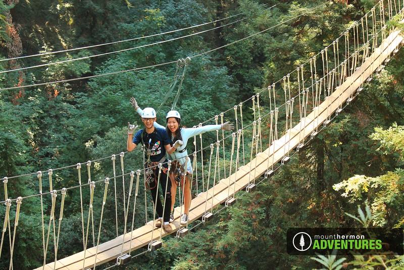 redwood_bridge_1473461482846.jpg