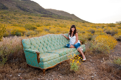 Jaclyn sofa in desert