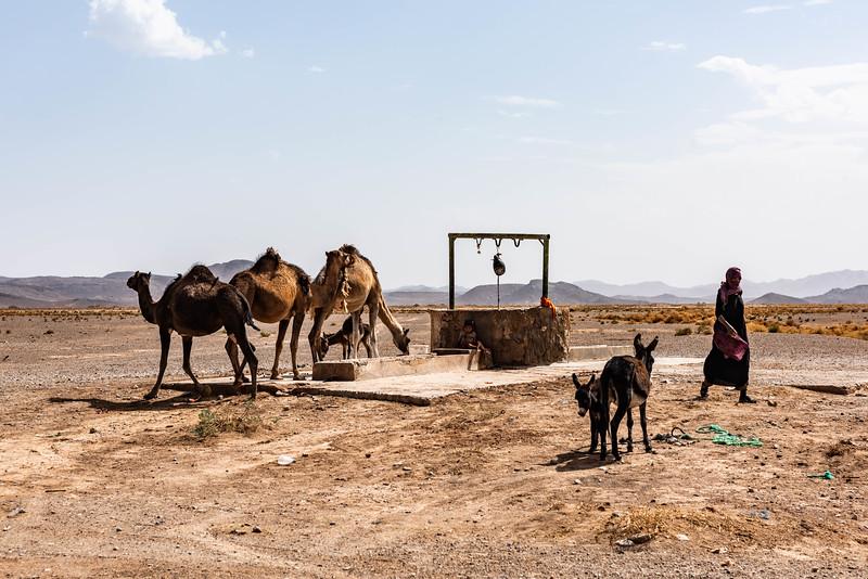 Marruecos-_MM11056.jpg