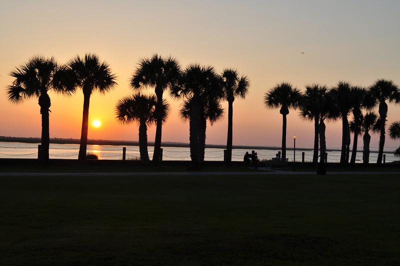 Sunset & Palm Trees on Jekyll Island.