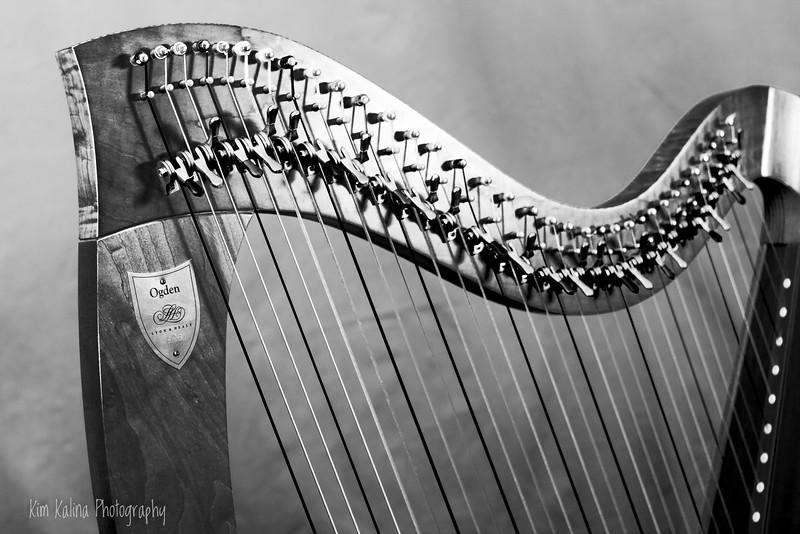 Harp Dark.jpg