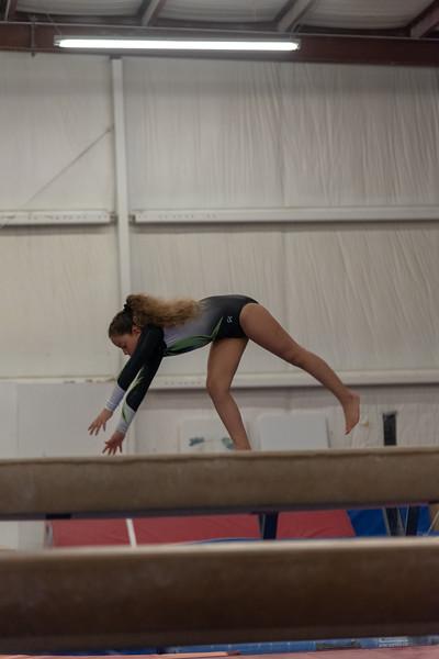 Brianna Gymnastics-0252.jpg