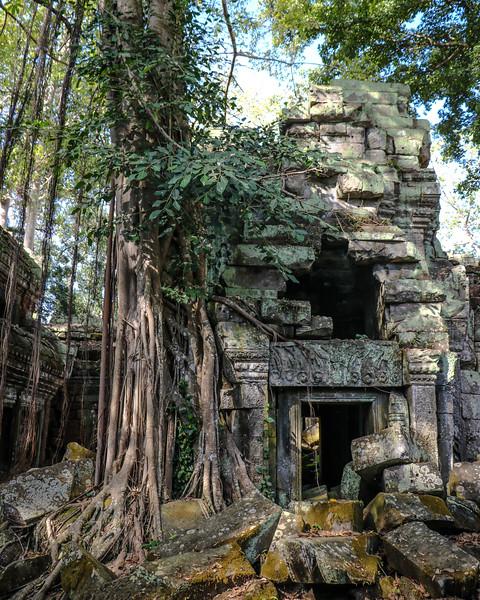 Cambodia-2018-9256.jpg