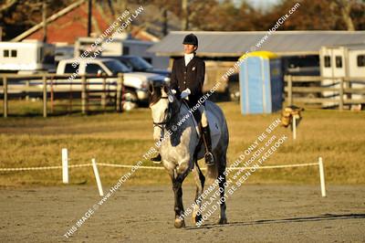 101128 USEA Horse Trial