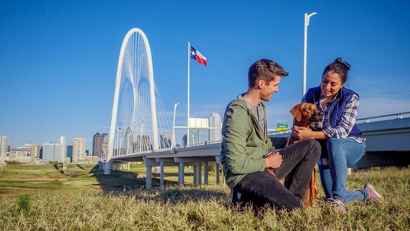 113017_11684_Bridge Skyline_Walk Dog.jpg