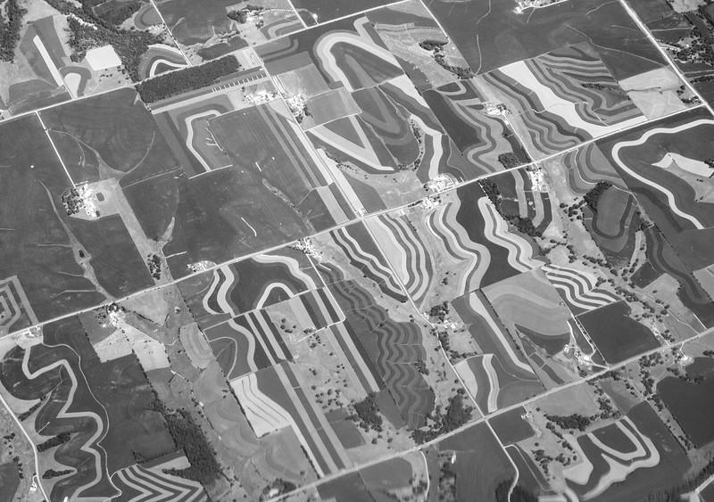 Farmland Patterns