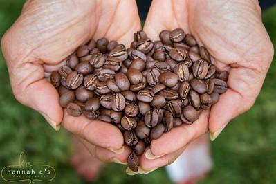 Elaine's Coffee