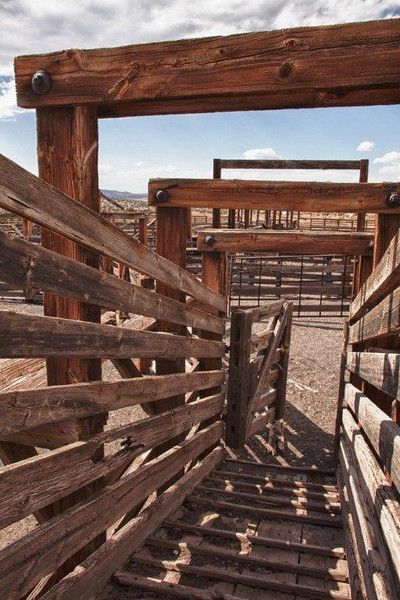 "Magdalena is the official ""end of the trail"" for cattle drives that took livestock to these still standing stockyards for transport by train to far away markets. The last 'cattle drive' ended in the early 1970's."