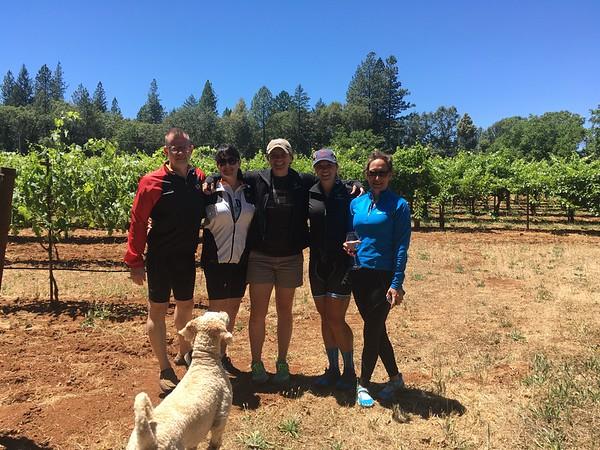 California Wine Explorer 06/25/17