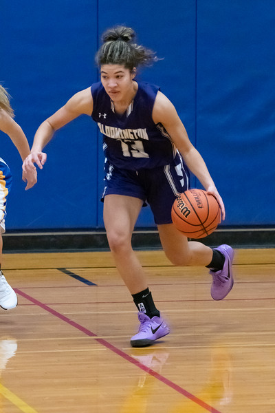 12-28-2018 Panthers v Brown County-0668.jpg