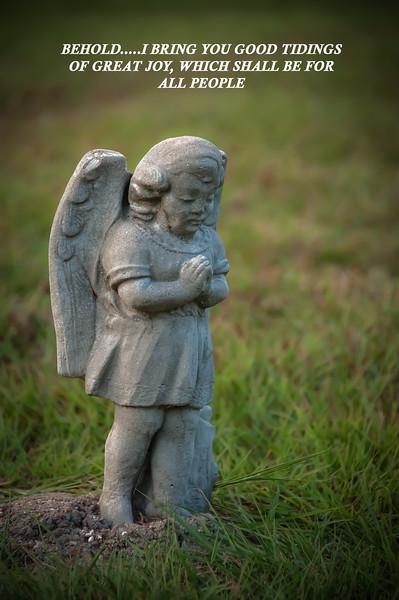 lone angel.jpg