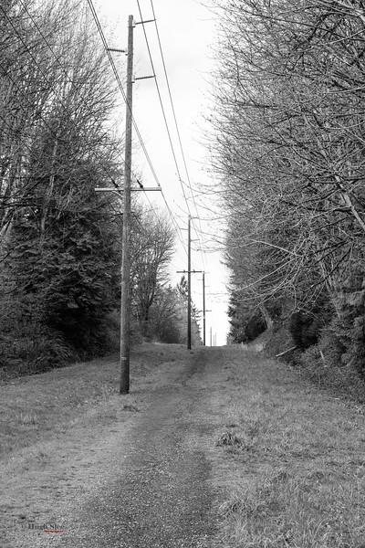 1-2020-03-31 Walk-2.jpg
