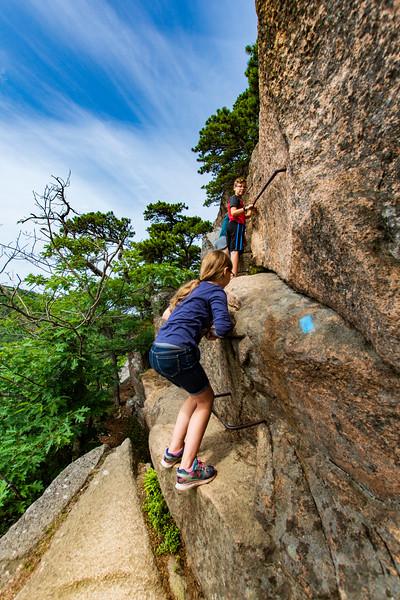 Beehive-climbingup-Grace-Elijah2.jpg