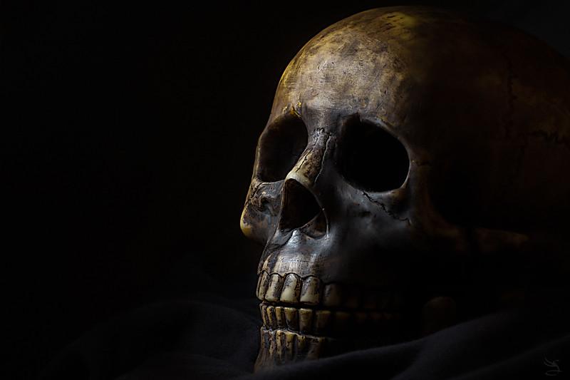 20140829-Skull.jpg