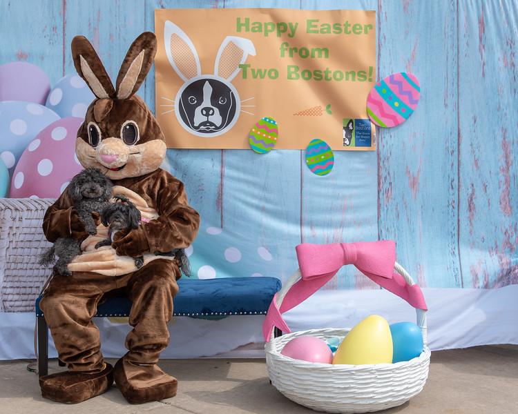 Easter2019TwoBostons-8243.jpg