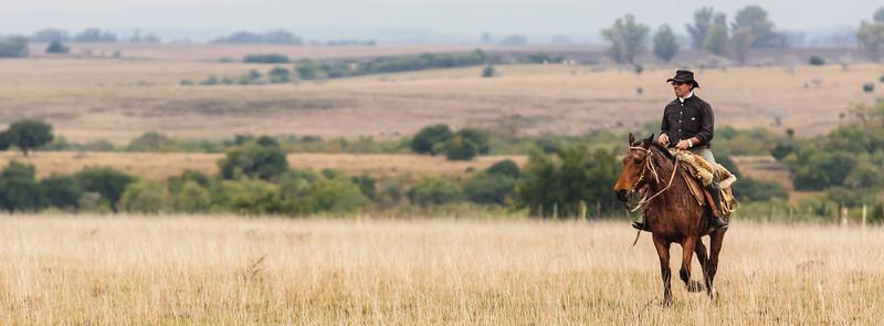 Gaucho en el campo