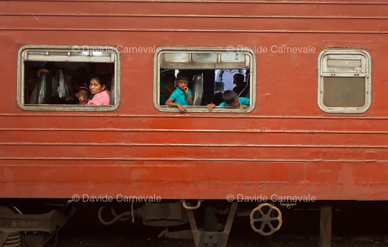 srilanka (8 di 74).jpg