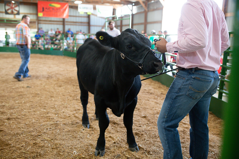 BeefShow-108.jpg