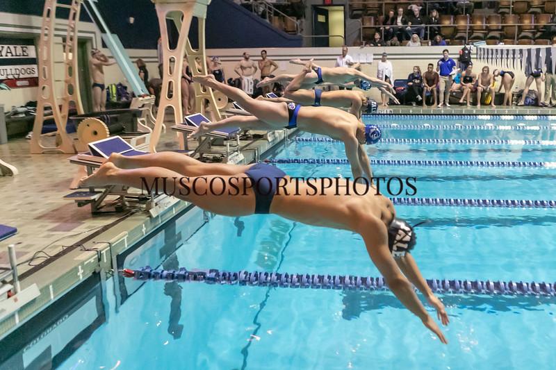 Swimming-diving vs Seton Hall_1051.jpg
