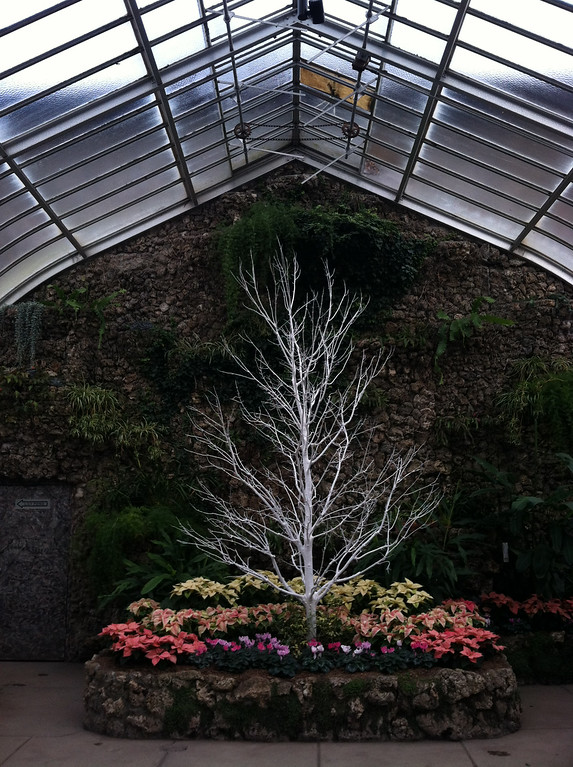 . This Dec. 3, 2014 photo shows plants at the Anna Scripps Whitcomb Conservatory on Detroit�s Belle Isle, an island in the Detroit River that houses a state park. The conservatory opened in 1904 and despite Detroit�s financial troubles and urban blight, the greenhouse and botanical garden are pristine and beautifully maintained. The conservatory is managed by the Michigan Department of Natural Resources and a private nonprofit called the Belle Isle Conservancy. (AP Photo/Beth J. Harpaz)