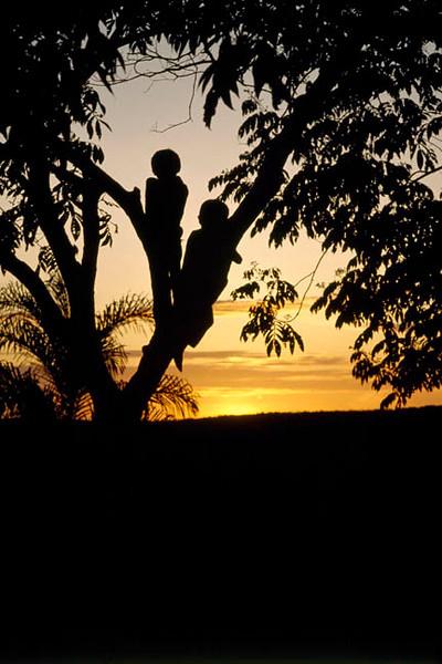 Makuna children enjoying the sunset view.Makuna, Eastern Colombia Amazon, Vaupes region.