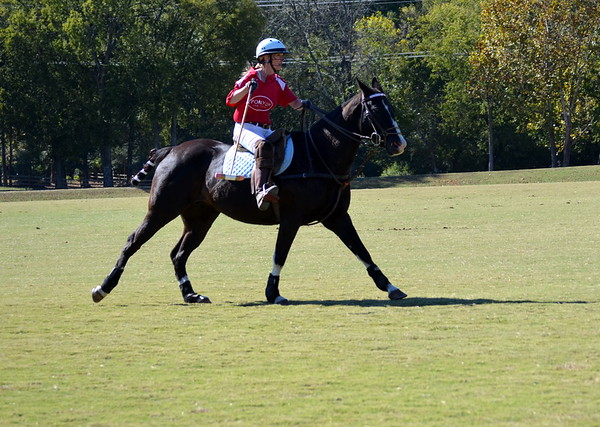 Atlanta Polo Club Edited Shots - October 22, 2016