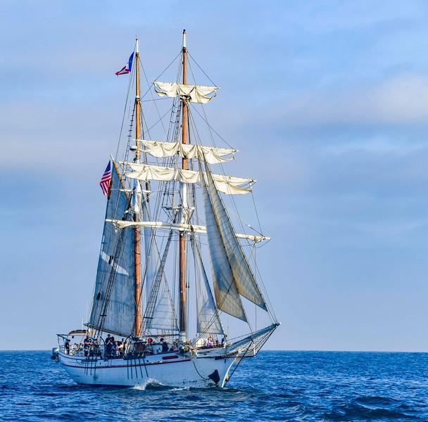 TallShips 2018-25.jpg