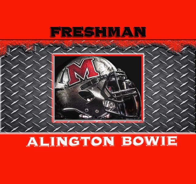 arlington bowie