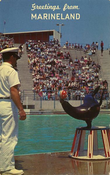 Marineland Seal Circus