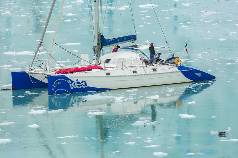 Glacier Bay 14.jpg