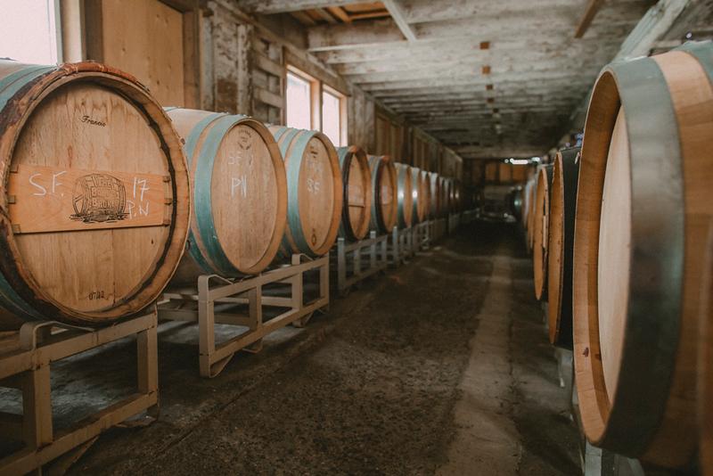 CIK-190425-Winery-API_5287.jpg