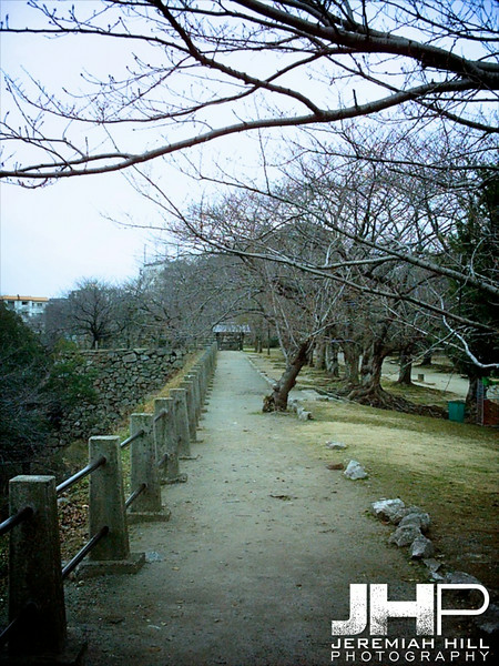 """Green Path"", Fukuoka, Japan, 2006 Print PMJB-027"