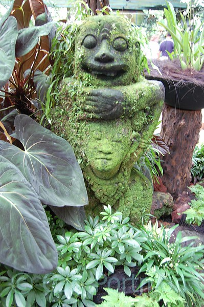 National Orchid Gardens (27).jpg
