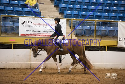 MAR 25 Hunter Under Saddle and Hunt Seat EQ