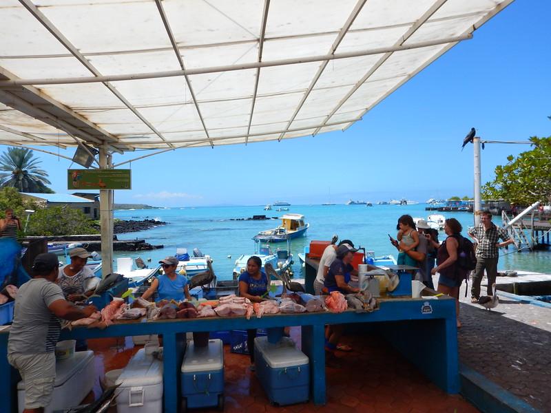 Santa Cruz Seafood Market