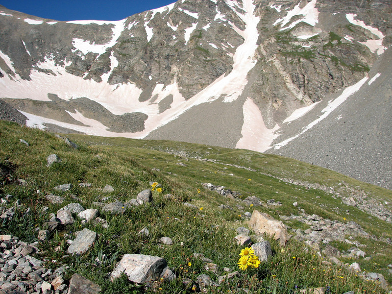 Torreys Peak 7-13-06 056.jpg