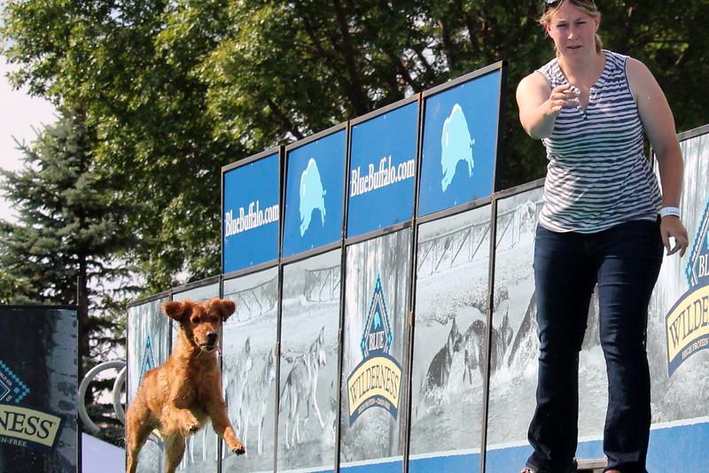2015.8.6 Winnebago County Fair Dock Dogs (89).JPG