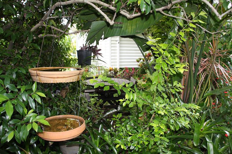 garden (22).jpg