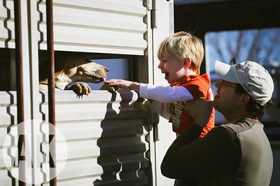 11/25/11 - LHW Hillbrook Farm
