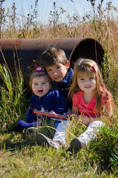 Huizenga Family Fall 2013