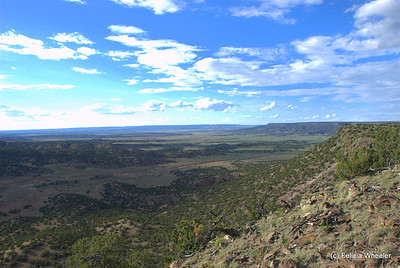 Quemado, New Mexico