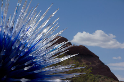 chihuly-2014
